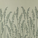 Product: BP5105-Feather Grass