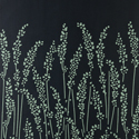 Product: BP5106-Feather Grass