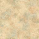 Product: CT257027-Scroll Texture