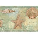 Product: CT46052B-Sea Shells Border