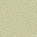 Product: 1065067-Coral