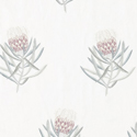 Product: 236352-Protea Flower