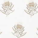 Product: 236354-Protea Flower