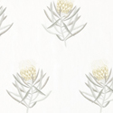 Product: 236355-Protea Flower
