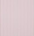 Product: DCAVTP101-New Tiger Stripe