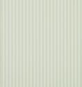 Product: DCAVTP103-New Tiger Stripe