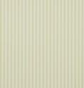 Product: DCAVTP108-New Tiger Stripe