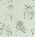 Product: DCLAEC106-Etchings and Roses