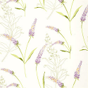 Product: T111-Lavender