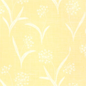 Product: T125-Queen Anne's Lace