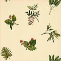 Product: T1644-Island Leaves