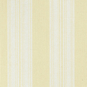 Product: T24346-Deck Stripe