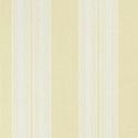 Product: T24346-Deck Stripe