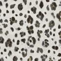 Product: T24377-Panthera