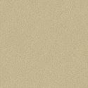 Product: T3005-Sagri