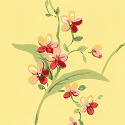 Product: T3137-Orchid Trail