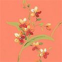 Product: T3139-Orchid Trail