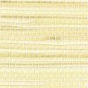 Product: T5076-Mandarin Grass