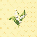 Product: T5113-Lily of the Valley