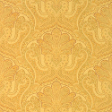 Product: T5611-Indienne Paisley