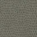 Product: T57153-Chameleon