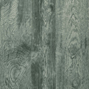Product: T57193-Eastwood