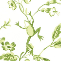 Product: T6116-Happy Frogs