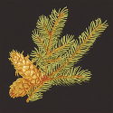 Product: T6335-Evergreen