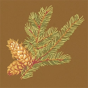 Product: T6336-Evergreen