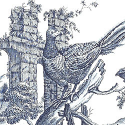 Product: T6340-Pheasant Toile