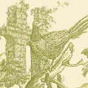 Product: T6343-Pheasant Toile
