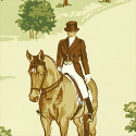 Product: T6344-Equestrian
