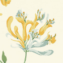 Product: T6724-Honeysuckle