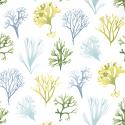 Product: T6738-Kelp