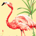 Product: T6742-Flamingo Bay