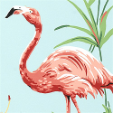 Product: T6743-Flamingo Bay