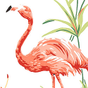 Product: T6744-Flamingo Bay