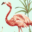 Product: T6745-Flamingo Bay