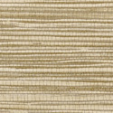 Product: T75118-Jindo Grass