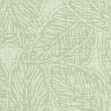 Product: T8152-Pomelo