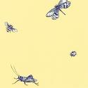 Product: T9765-Ladybug