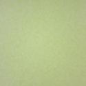 Product: W619014-Corteccia