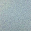 Product: W619018-Corteccia