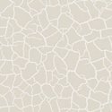 Product: 312526-Cracked Earth