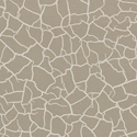 Product: 312528-Cracked Earth