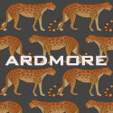 Collectie: Ardmore