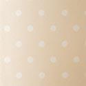 Product: SPONW062-Spot