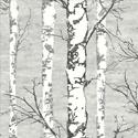 Product: TH50200-Alaska Birch