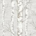 Product: TH50208-Alaska Birch