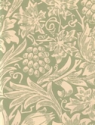 Product: 210477-Sunflower